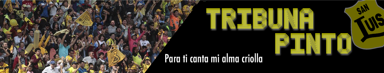 Tribuna Pinto